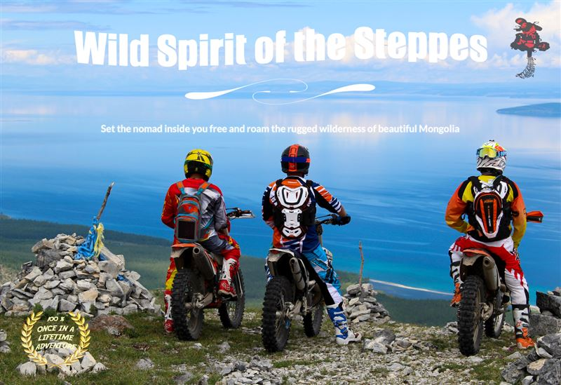 Wild Spirit Of The Steppes